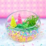 Make Your Own Colorful Confetti Succulent Terrarium